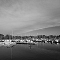 Fairfield Marina by Stephanie McDowell
