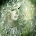 Fairy by Angel Ciesniarska