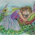 Fairy Dreams by Val Stokes