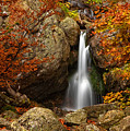 Fairy Fall by Evgeni Dinev