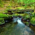 Fairy Glen Bridge by Joe Ormonde