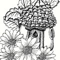 Fairy House With Pine Cone Roof And Daisies by Dawn Boyer