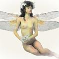 Fairy Luck by Quim Abella