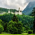 Fairytale Castle Neuschwanstein  by Wolfgang Stocker
