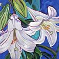 Faith Lily One by Dawn Thrasher