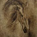 Faith by Paula Collewijn -  The Art of Horses