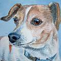 Beloved Dog Commission By Irina Sztukowski  by Irina Sztukowski