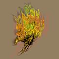 Falcon Fire by Ayesha DeLorenzo