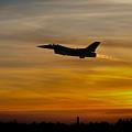 Falcon Sunset by J Biggadike