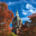 Fall And The Dome by Mark Dodd