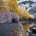 Fall And Winter At Silver Lake by Cat Connor
