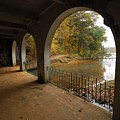 Fall Arches by Donald Groves