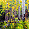 Fall Aspen Forest by Gary Kim