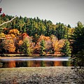 Fall At Bass Lake by Vice Photo