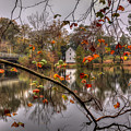 Fall At Causey's Mill by Jerry Gammon