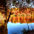 Fall At Lake by Ronda Ryan