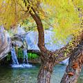 Fall At Murray Falls I by Scott Campbell