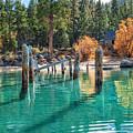 Fall At Skunk Harbor Lake Tahoe by Dianne Phelps