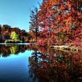 Fall At The Crosspointe Lake by Ronda Ryan
