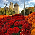 Fall At The Peabody by Debbie Fenelon