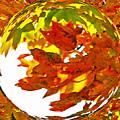 Fall Ball by Lydia Holly