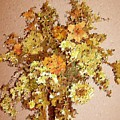 Fall Bouquet by Don Phillips