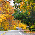 Fall Color Along Road  5643 by Jack Schultz