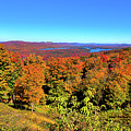 Fall Color On The Fulton Chain Of Lakes by David Patterson