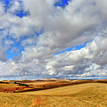 Fall Color On The Palouse by David Patterson