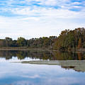 Fall Color On The Pond by Alicia Collins
