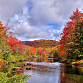Fall Color On The River by David Patterson