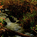 Fall Color Stream by Kenneth Eis