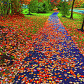 Fall Colors 2014-#15 by Srinivasan Venkatarajan