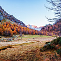 Fall Colors At Alpe Devero by Roberto Pagani