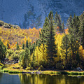 Fall Colors At North Lake by Alexander Kunz