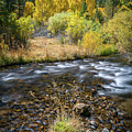 Fall Colors At South Fork Bishop Creek by Alexander Kunz