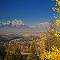 Fall Colors At The Snake River Overlook by Sam Antonio Photography