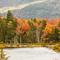 Fall Colors By The Lake by Terri Morris