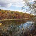 Fall Colors by David Lyon