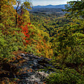 Fall Colors From The Top Of Amicolola Falls by Barbara Bowen