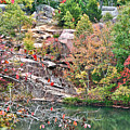 Fall Colors In Depth by Larry Jost