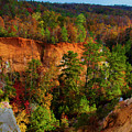 Fall Colors In The Canyon by Barbara Bowen