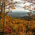 Fall Colors In The Cherokee National Forest by Barbara Bowen