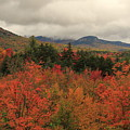 Fall Colors In White Mountains New Hampshire by Dan Sproul