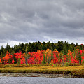 Fall Colors On Raquette Lake by David Patterson