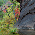 Fall Colors Peek Around Mountain Vertical by Heather Kirk