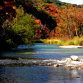 Fall Colors by Stacey Robinson
