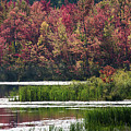 Fall Colours - Thompson Lake 7619 by Steve Somerville