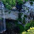 Fall Creek Falls by Kristin Elmquist