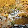 Fall Creek by Ramona Murdock